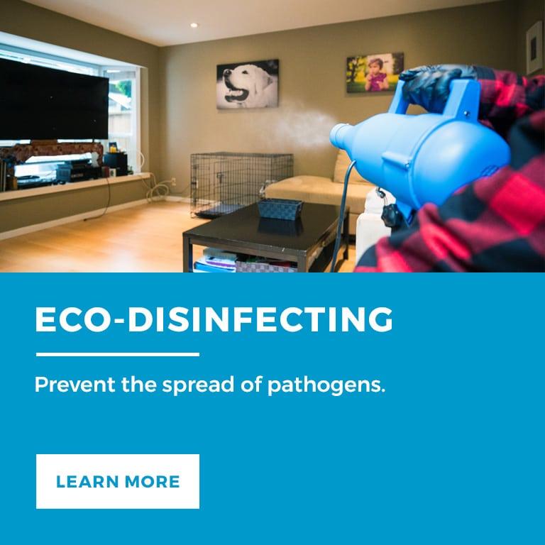 Eco-Disinfecting